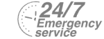 24/7 Emergency Service Pest Control in Canning Town, North Woolwich, E16. Call Now! 020 8166 9746