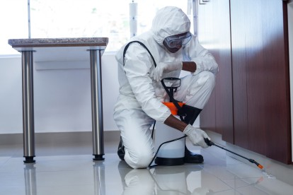 Emergency Pest Control, Pest Control in Canning Town, North Woolwich, E16. Call Now 020 8166 9746